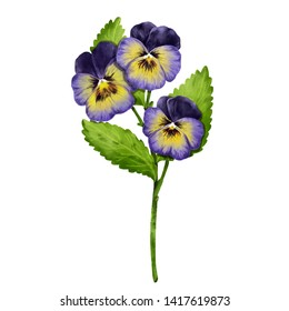 Pansies bouquet flowers realistic illustration