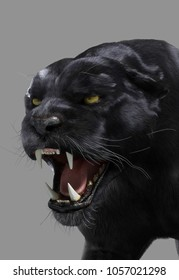Panther 3D Artwork very enraged