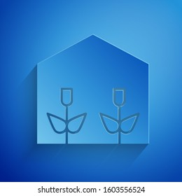 Paper cut Home greenhouse and plants icon isolated on blue background. Paper art style.
