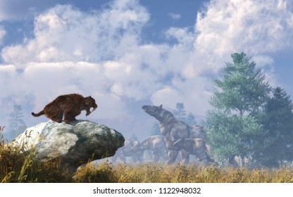 Paraceratheriums were the largest land mammals to ever exist. These early relatives of rhinos are migrating has a herd as a eusmilus, an extinct breed of great cat watches.  3D rendering