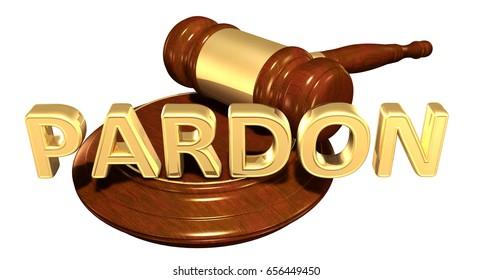 Pardon Law Concept 3D Illustration