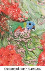 Parrot and flowering gum. Single Rainbow lorikeet partly hidden by leaves and flowers.Watercolour and pencil drawing.
