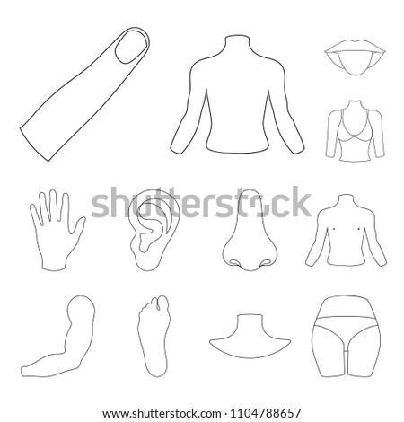 Part Body Limb Outline Icons Set Stock Illustration