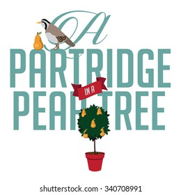 A partridge in a pear tree illustration