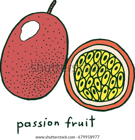Passion fruit coloring page graphic raster colorful doodle art for coloring books for adults tropical and exotic fruit line illustration illustration