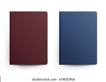 Passport Blank. Front Cover. Realistic Template Illustration. Blue And Red Classic Passport. International Identification Document
