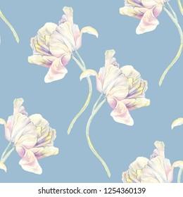 Pastel tulips flowers watercolor illustration pattern