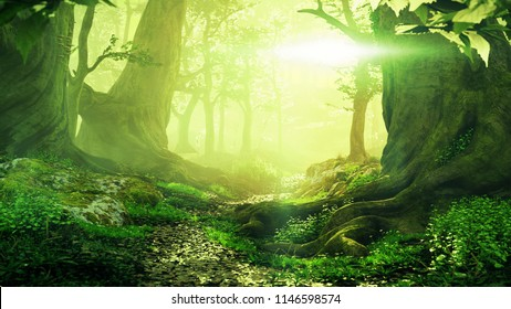 path through magical forest at sunrise, beautiful old trees fantasy landscape, 3d illustration