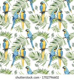 Pattern with beautiful watercolor parrots and tropical leaves. Tropics. Realistic tropical leaves. Tropical birds.  On white background.