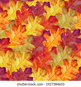 A pattern of bright autumn leaves of oak. Can be used for packaging paper, printing, and more.