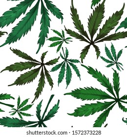 Pattern of cannabis leaves on white background