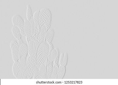 Pattern of embossed cactus  with light grey background can be use as wallpaper ,blessing card ,background or vintage surface
