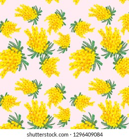 Pattern with mimosa on a light background.Illustration of mimosa on a light background in a pattern.