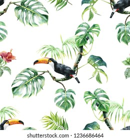 pattern with toucan. Tropical bird