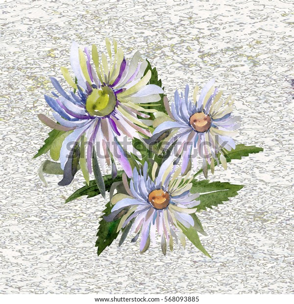 Pattern of watercolor asters on a color or textural background