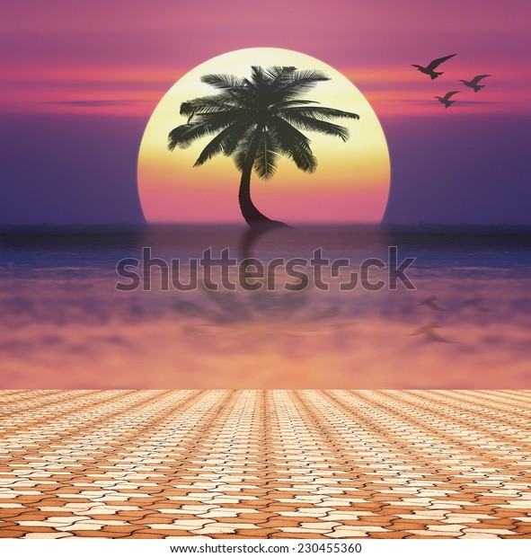 Paving stone floor with Imagine colorful sunset background.