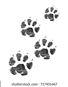 Cat Paw Print Images Stock Photos Vectors Shutterstock The pnghost database contains over 22 million free to download transparent png images. https www shutterstock com image illustration paw print isolated on white background 717431467