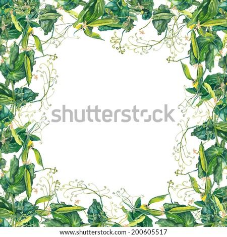 Pea Frame Stock Illustration - Royalty Free Stock Illustration ...