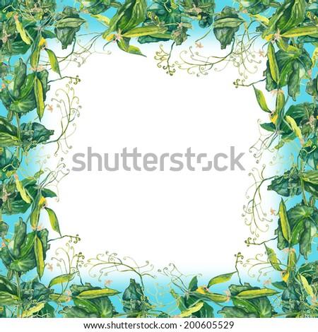 Pea Frame Stock Illustration 200605529 - Shutterstock