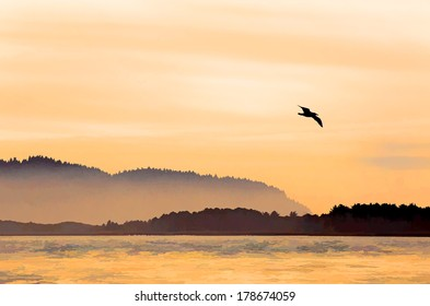 Peaceful bay in orange sunset light  with mist and birds watercolor painting