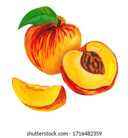 Peach with slices and leaf on a white background. Hand-drawn illustration.