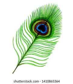 Peacock Feather Clipart Images, Stock Photos & Vectors   Shutterstock