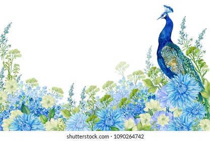 peacock and floral background .watercolor illustration