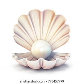 pearl shell  isolated on a white. 3d illustration