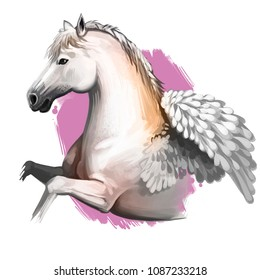 Pegasus digital art illustration isolated on white background. Legendary ancient mythological crature, fairy-tale dreamlike animal character drawing. Hand drawn graphic clip art for web, print, design