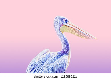 Pelican Bird with oil paint effect on pink and purple pastel colors background. Surreal Art