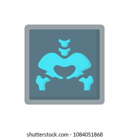 Pelvis flat x-ray human bones icon illustration raster