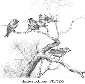 Pencil Drawing Images, Stock Photos & Vectors | Shutterstock