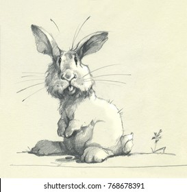 Pencil drawing of funny cartoon character rabbit hare illustration