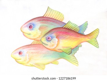 Pencil drawing. Illustration for children. Image of animals with colored pencils. Fish shoal swam together in the sea.