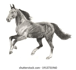 Pencil drawing of running horse