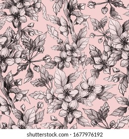 Pencil drawn pattern with apple flowers. Botanical seamless pattern for textile, wrapping, wallpaper. Floral ornament in vintage style.