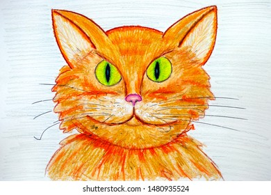 Pencil hand drawing portrait of ginger cat. Close up.