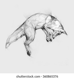 Pencil illustration, hand graphic - Jumping fox