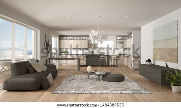 Penthouse Living Room Kitchen Interior Design Stock Illustration 1484389535