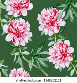 Peonies watercolor illustration pattern