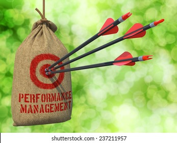 Performance Management- Three Arrows Hit in Red Target on a Hanging Sack on Natural Bokeh Background.