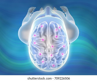 Person brain and nervous system viewed from top 3D illustration.