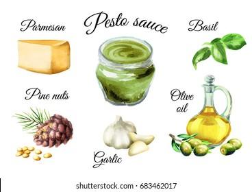 Pesto sauce ingredients. Watercolor  illustration