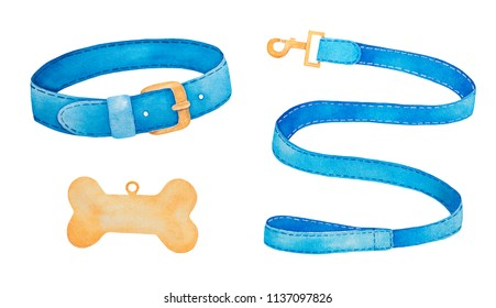 Pet Supplies and Walking Gear Collection: buckle collar, lead and bone shaped identification tag. Colorful simple modern design. Watercolor painting on white background, cut out clip art elements.