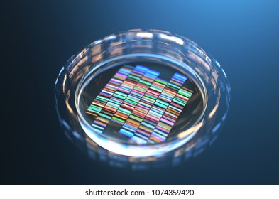 Petri dishes with samples for DNA sequencing,3d rendering.