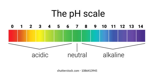 ph scale. infographic acid-base balance. scale for chemical analysis acid base.  illustration. colorful graph for test