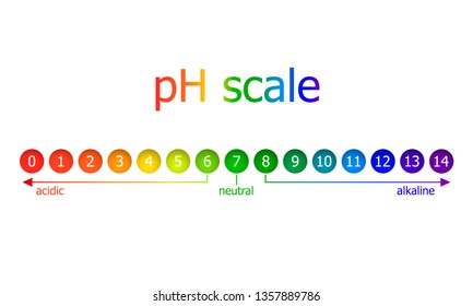 pH Scale Scheme, Rainbow Colors, Isolated on White Background Illustration, Healthy Eating Concept.