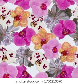 Phalaenopsis orchid seamless pattern for prints, fabrics, paper, backgrounds and various designs