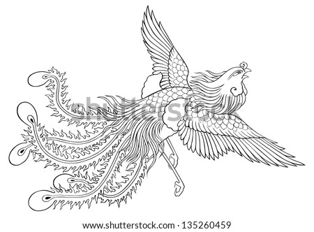 Phoenix Chinese Style On White Background Stock ...