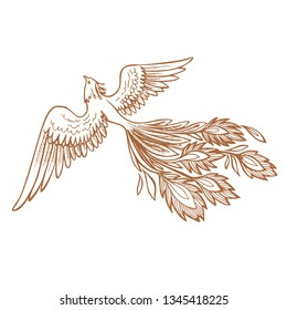Phoenix Fire bird illustration and character design.Hand drawn Phoenix tattoo Japanese and Chinese style,Legend of the Firebird is Russian fairy tales and it is creature from Slavic folklore
